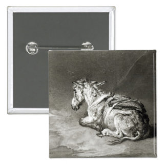 Donkey at Rest Pinback Button