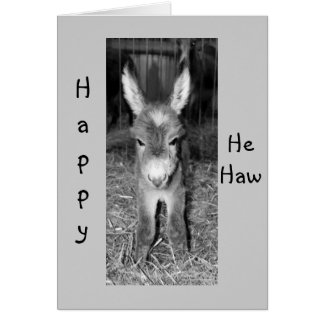 "DONKEY BABY SAYS HAPPY ""HE HAW"" BIRTHDAY TO YOU CARD"