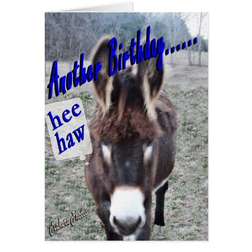 donkey birthday cards