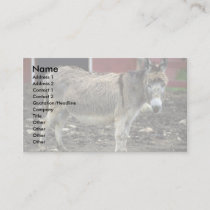 Donkey Business Card