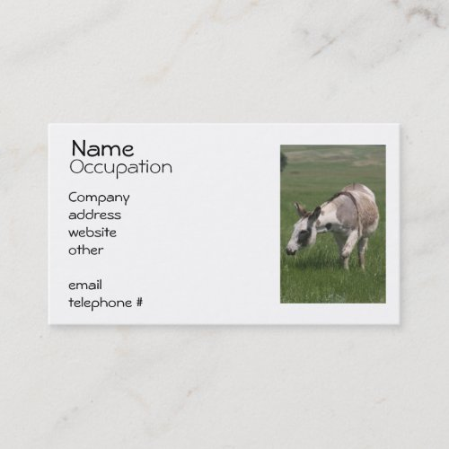 Donkey Business Cards