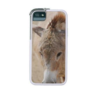 Donkey iPhone 5 Case