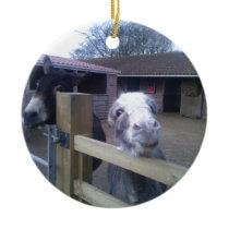 Donkey Ceramic Ornament