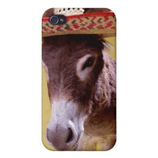 Donkey Equus hemonius Wearing Straw Hat iPhone 4 Covers