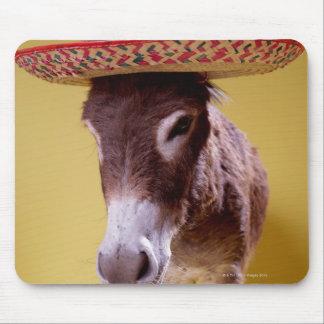 Donkey (Equus hemonius) wearing straw hat Mouse Pad