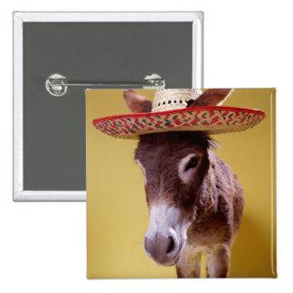 Donkey (Equus hemonius) wearing straw hat Pinback Button