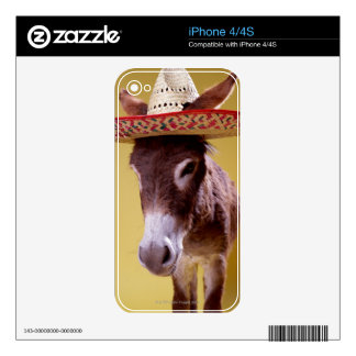 Donkey (Equus hemonius) wearing straw hat Skins For iPhone 4