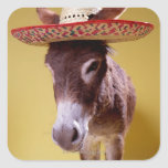 Donkey (Equus hemonius) Wearing Straw Hat Square Stickers