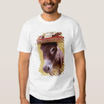 Donkey (Equus hemonius) wearing straw hat T-shirt