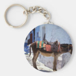 Donkey, Fira Santorini, Greece Key Chains