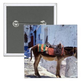 Donkey, Fira Santorini, Greece Pinback Button