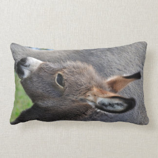 Donkey foal portrait vertical lumbar pillow