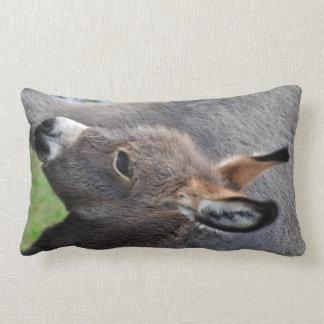 Donkey foal portrait vertical throw pillow