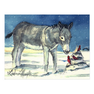 Donkey For Christmas Post Card
