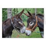 Donkey friends cards