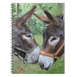 Donkey friends journal