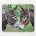 Donkey friends mouse pad
