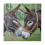 Donkey friends small square tile