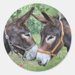 Donkey friends stickers