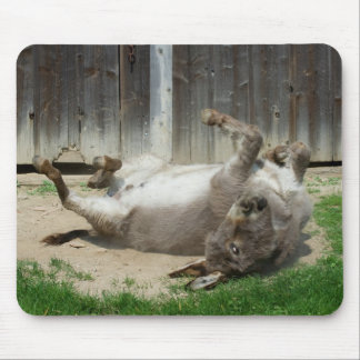 Donkey Having A Bath Mouse Pad