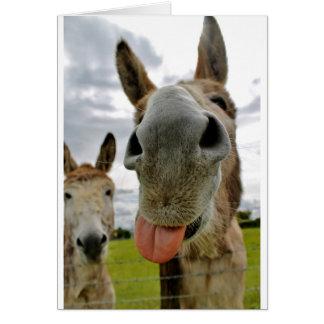 Donkey Humour Card