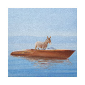 Donkey in a Riva 2010 Canvas Print