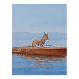 Donkey in a Riva 2010 Postcard