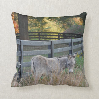 Donkey in an Autumn field, Pillow