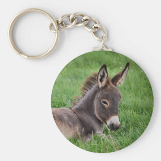 Donkey In The Grass Basic Round Button Keychain