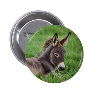 Donkey In The Grass Button