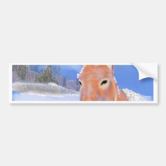 donkey in the snow bumper sticker