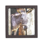 Donkey in watercolor premium gift boxes