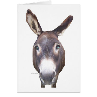 Donkey in your face stationery note card