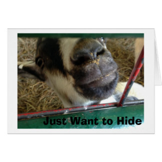 DONKEY JUST WANTS TO HIDE MISSES YOU LIKE CRAZY CARD