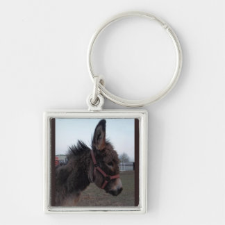 Donkey keyring keychains