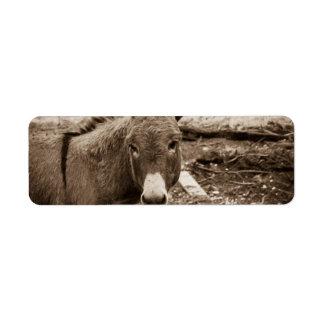 Donkey Label