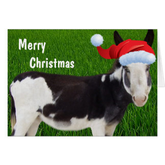 Donkey Merry Christmas Greeting Card