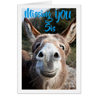DONKEY MISSES ***SIS*** NOT VERY HAPPY ABOUT THAT CARD