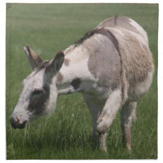 Donkey Napkins