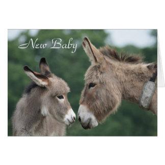 Donkey new baby card