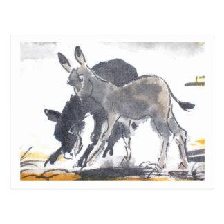 Donkey No. 01 * donkey postcards * Donkey Postcard