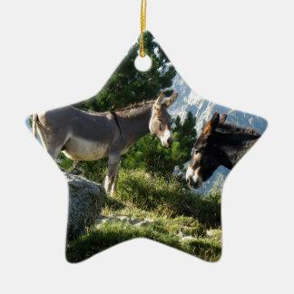 Donkey of Corsica Ceramic Ornament