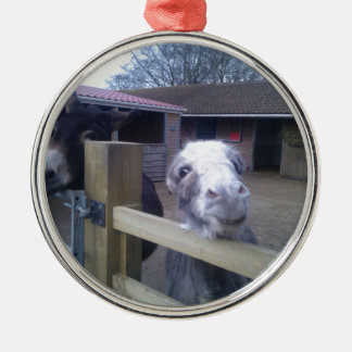 Donkey Silver-Colored Round Decoration