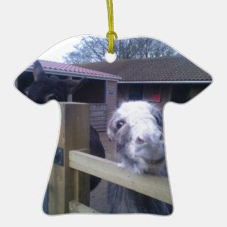 Donkey Ceramic T-Shirt Decoration