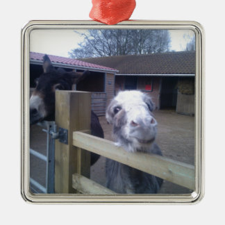 Donkey Silver-Colored Square Decoration