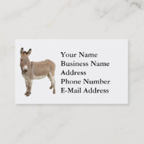 Donkey Photograph Design Business Card