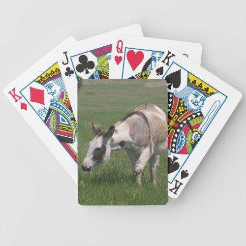 Donkey Playing Cards