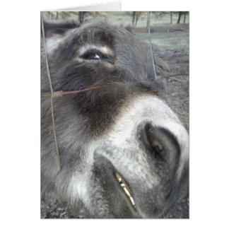 Donkey Smile Card