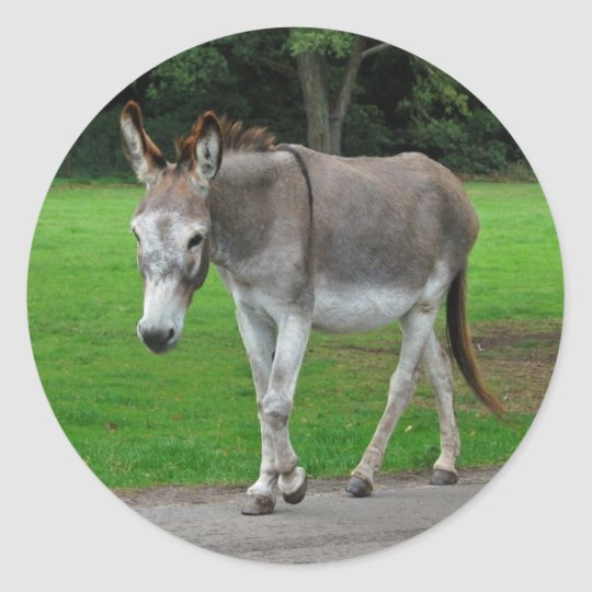 Donkey stickers