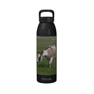 Donkey Drinking Bottle
